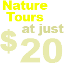 Nature Tours at just $15 per person